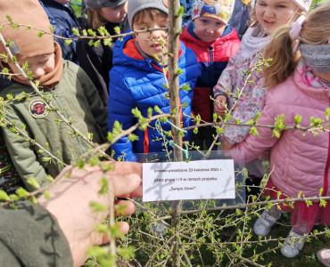 Sadzenie drzew z okazji Dnia Ziemi
