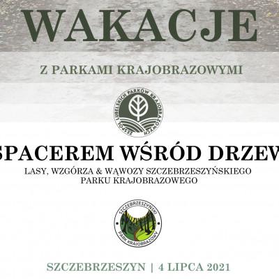 """Wakacje z parkami krajobrazowymi """"Spacer wśród drzew"""""""