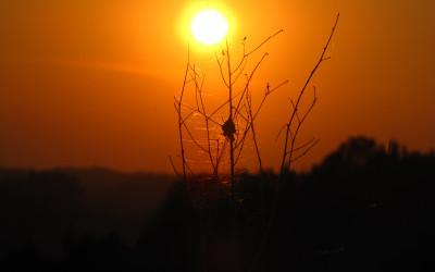 Zachód słońca nad Łaziskami