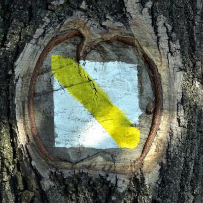 Nowa ścieżka edukacyjna w Krzczonowskim Parku Krajobrazowym