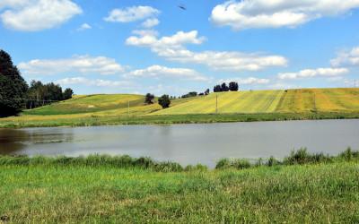 Zbiornik wodny w Broczówce