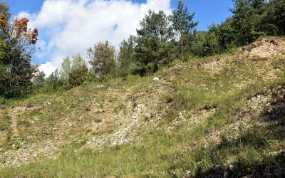 Zespół przyrodniczo-krajobrazowy Kamienny Wąwóz