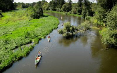 Spływ kajakowy w Nadwieprzańskim Parku Krajobrazowym, fot. Michał Zieliński