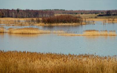 Jezioro Wytyckie, fot. Michał Zieliński