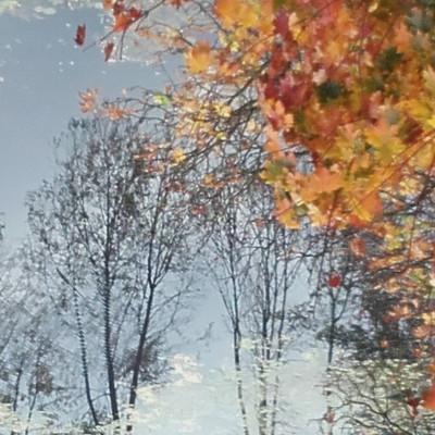 Jak nie kochać jesieni …