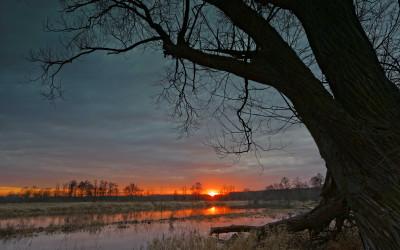 Wyróżnienie - Dolina środkowego Wieprza (Nadwieprzański PK), Fot. Marcin Najdzioński ©