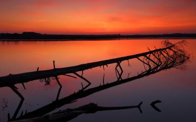 Wyróżnienie - Wschód słońca w Rezerwacie Imielty Ług (PK Lasy Janowskie), Fot. Grzegorz Szkutnik ©