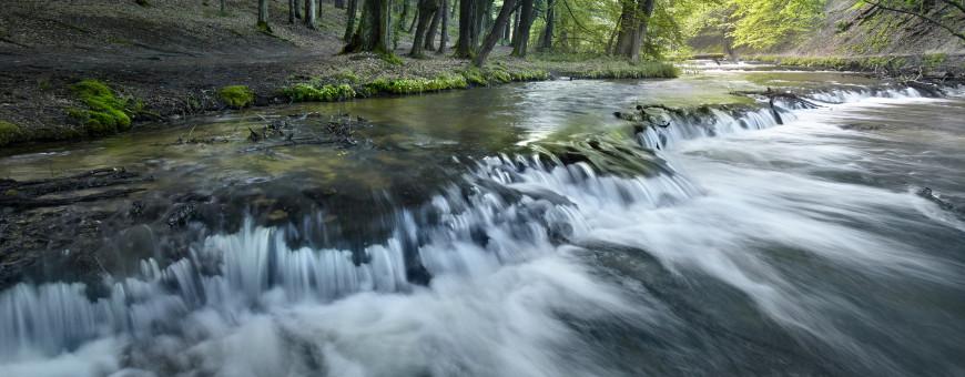 Roztoczańskie szumy (rzeka Tanew)