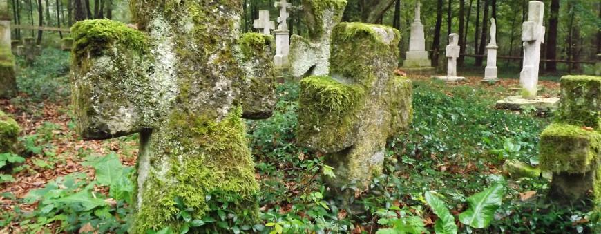 Cmentarz w Starym Bruśnie