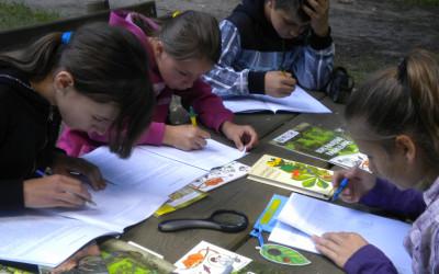 Zajęcia w punkcie edukacyjnym  leśne tajemnice
