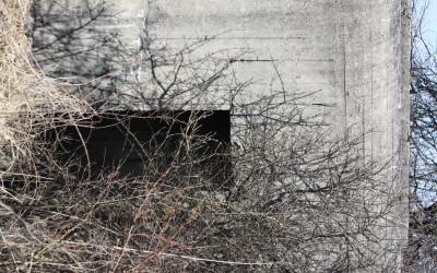 Bunkry na szlaku Linii Mołotowa (7)