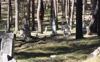 Cmentarz w Teniatyskach  (2)
