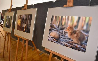 Wystawa zdjęć  Artura Tabora
