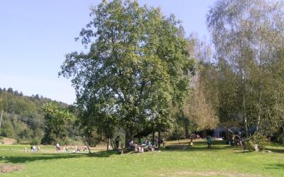 Rezerwat św. Roch fot. K. Kowalczuk (3)