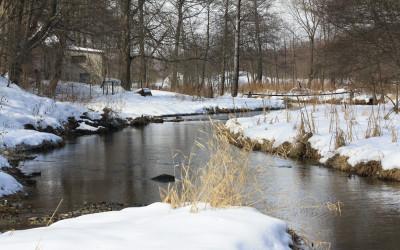 Rzeka Wieprz zimą fot. K. Kowalczuk  (2)