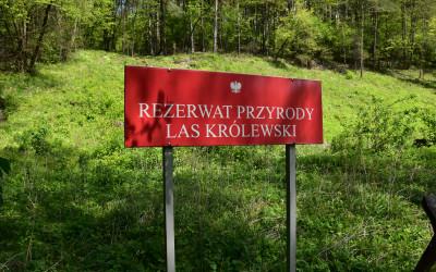 Tablica rezerwatu przy murawie kserotermicznej fot. K. Wojciechowski