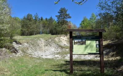 Zespół przyrodniczo-krajobrazowy Kamienny Wąwóz fot. K. Wojciechowski