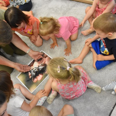 Jajka żółwia i rogi jelonka, czyli edukacja ekologiczna całkiem maleńkich