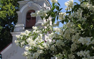 Zabytkowa dzwonnica w Janowie Podlaskim