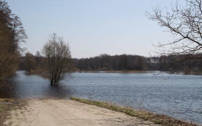 Widok na łąki zalane przez wiosenne roztopy