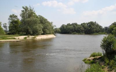 Meandrująca rzeka Bug