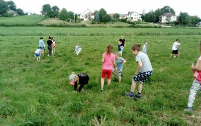 Wakacje z przyrodą (1)