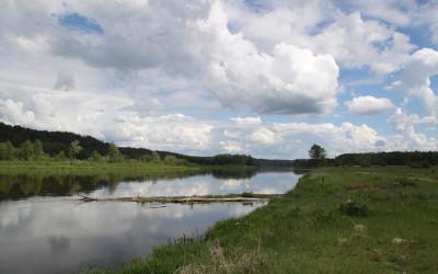 Malownicza rzeka Bug