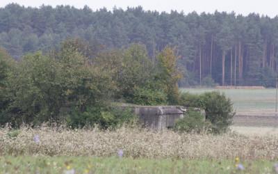 Bunkry z okresu II Wojny światowej w sąsiedztwie Sołokiji.