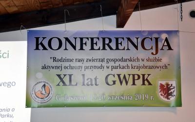 Baner konferencji