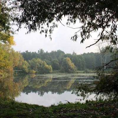 20 października Dniem Krajobrazu