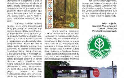 artykuł strona 2