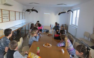 Uczestnicy warsztatów mogli dowiedzieć się więcej o różnorodności przyrodniczej i krajobrazowej z filmu o lubelskich parkach krajobrazowych