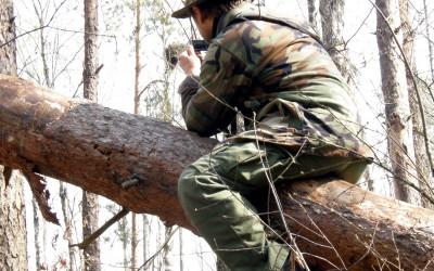 fotografując gniazdo puszczyka mszarnego
