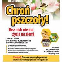 """Pobierz: Plakat """"Chroń pszczoły bez nich nie ma życia na ziemi"""""""