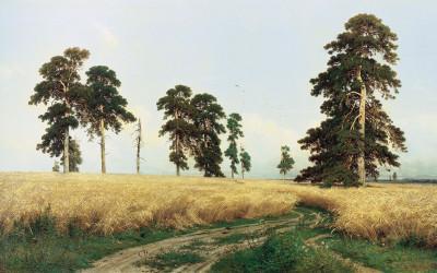 Obraz Iwana Szyszkina - Żyto