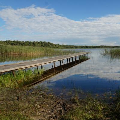 """Trofia jezior czyli o typach jezior w Parku Krajobrazowym """"Pojezierze Łęczyńskie"""" słów kilka"""