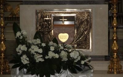 Relikwie Męczenników Podlaskich w ołtarzu głównym Kościoła p.w.św. Piotra i Pawła