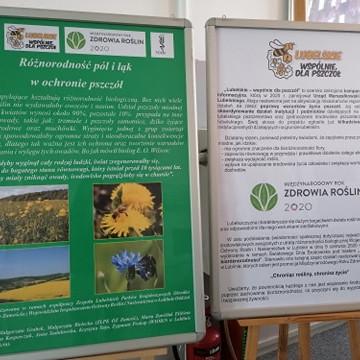 Różnorodność pól i łąk w ochronie pszczół - wystawa edukacyjna w ZLPK OZ Zamość.