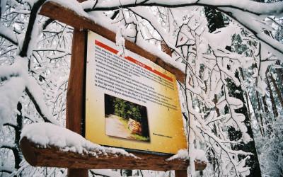 Tablica ścieżki przyrodniczej Stańków, fot. R. Jasiński