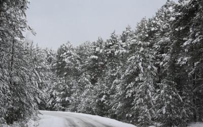 Zima w KPK, fot. Archiwum ZLPK OZ w Zamościu