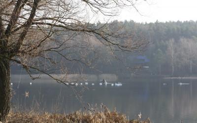 Jezioro Podleskie, fot. Archiwum ZLPK OZ w Zamościu