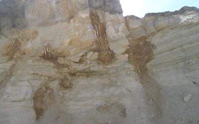 Kamieniołom Babia Dolina w Józefowie, fot. K. Kowalczuk (6)