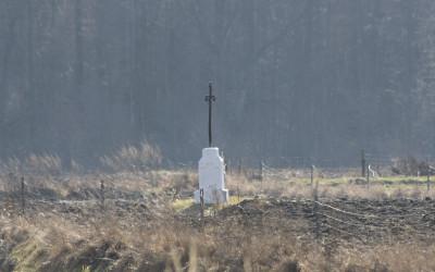 Krzyż Elżbiety Sapieżanki, fot. Archiwum ZLPK OZ w Zamościu