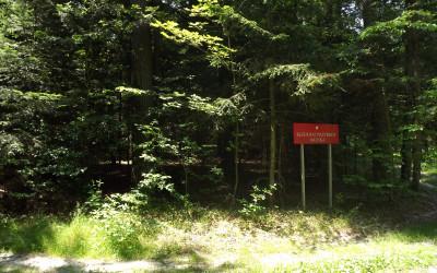 Rezerwat przyrody Jalinka (1), fot. Archiwum ZLPK OZ w Zamościu