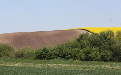 Krajobraz Krasnobrodzkiego parku Krajobrazowego, fot. K. Kowalczuk (2)