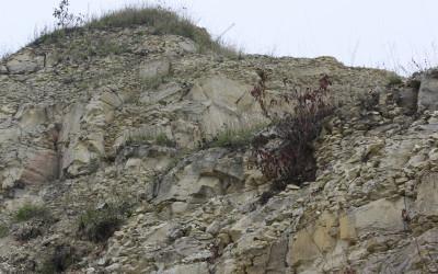 Stanowisko dokumentacyjne Kamieniołom w Krasnobrodzie, fot. K. Kowalczuk (6)