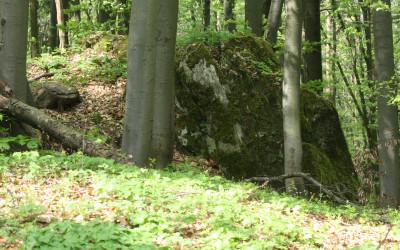 Wzgórze Kamień - pomnik przyrody nieożywionej, fot. K. Kowlaczuk (1)