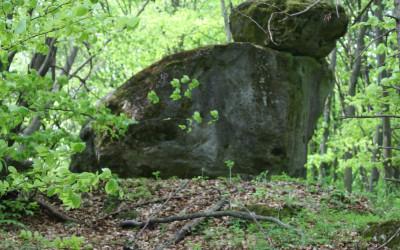 Wzgórze Kamień - pomnik przyrody nieożywionej, fot. K. Kowlaczuk (2)