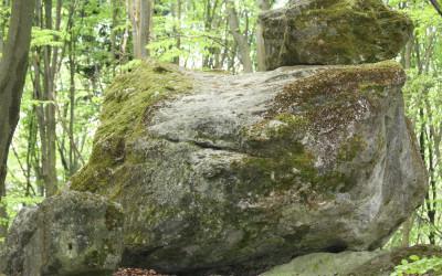 Wzgórze Kamień - pomnik przyrody nieożywionej, fot. K. Kowlaczuk (4)