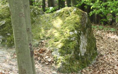 Wzgórze Kamień - pomnik przyrody nieożywionej, fot. K. Kowlaczuk (5)